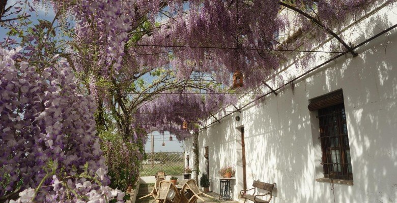 Cortijo del pino granada boek online bed and breakfast europe - Toren voor pergola ...